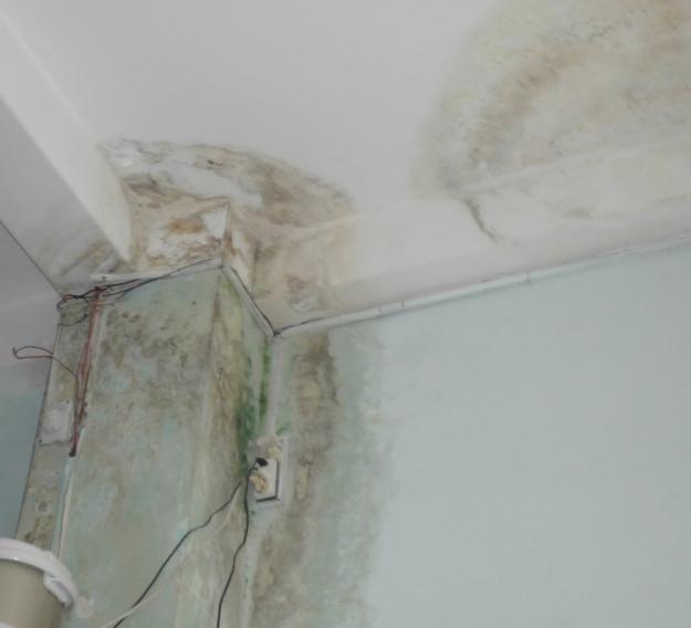 Phát hiện nguyên nhân để sửa nhà chống thấm tốt nhất