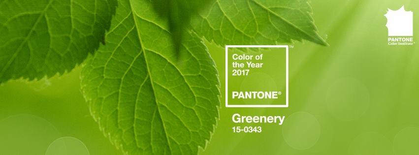 Thế nào là màu PANTONE của năm